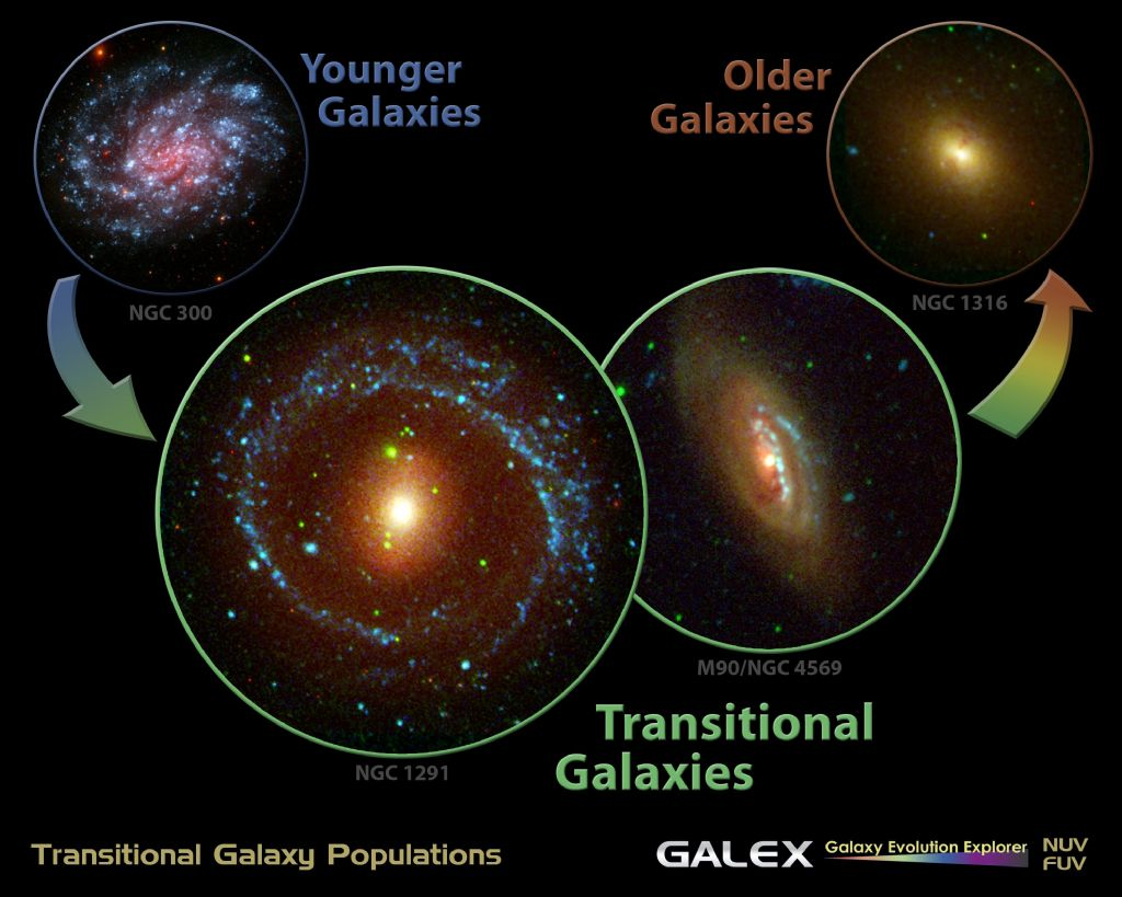Portrait of a Galaxy\'s Life